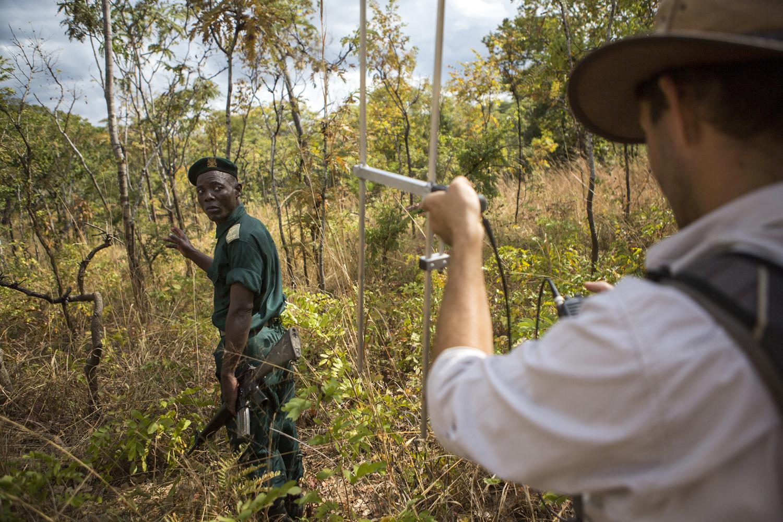 elephanttranslocation_malawi_09